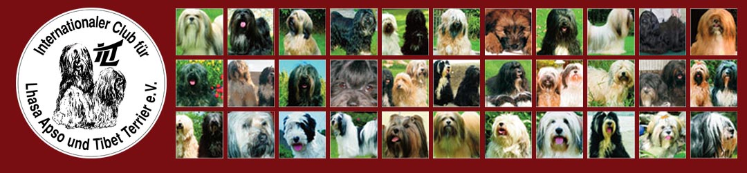 Internationaler Club für Lhasa Apso und Tibet Terrier e.V.